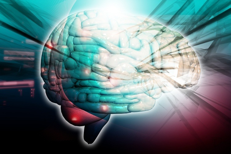 "Scientists Have Found the ""Ground Zero"" for Alzheimer's in the Brain"